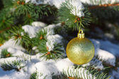 Yellow ball on the Christmas tree with snow — Stock Photo