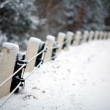 Stock Photo: Stone fence in snow