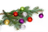 Viele farbige Bälle auf dem Zweig Tanne Weihnachtsbaum — Stockfoto