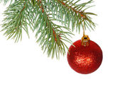 Red ball on the branch of Christmas tree — Stock Photo