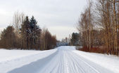 Winter forest with snow road — Foto Stock