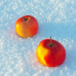 Two apples in the snow — Stock Photo