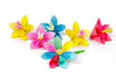 Many colored paper flowers and flower with varicolored petals — Stock Photo