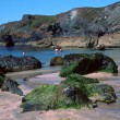Kynance Cove — Stock Photo