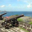 Stock Photo: Cannons in Fort George