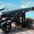 Cannons — Stock Photo