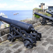 Stock Photo: Cannons