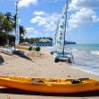 Стоковое фото: Halcyon Beach in St Lucia