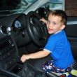 Stock Photo: Young child driving car