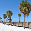 Stock Photo: Pier 60 Clearwater Beach Florida