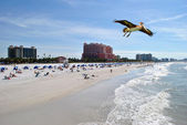 Clearwater Beach Florida — Stock Photo