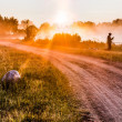 Stock Photo: Landscape, sunny dawn with road and fisher