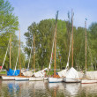Sailing Boats, Beccles, Suffolk, UK — Stock Photo