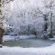 Snowy Pond — Stock Photo
