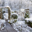 Snow covered garden — Stockfoto