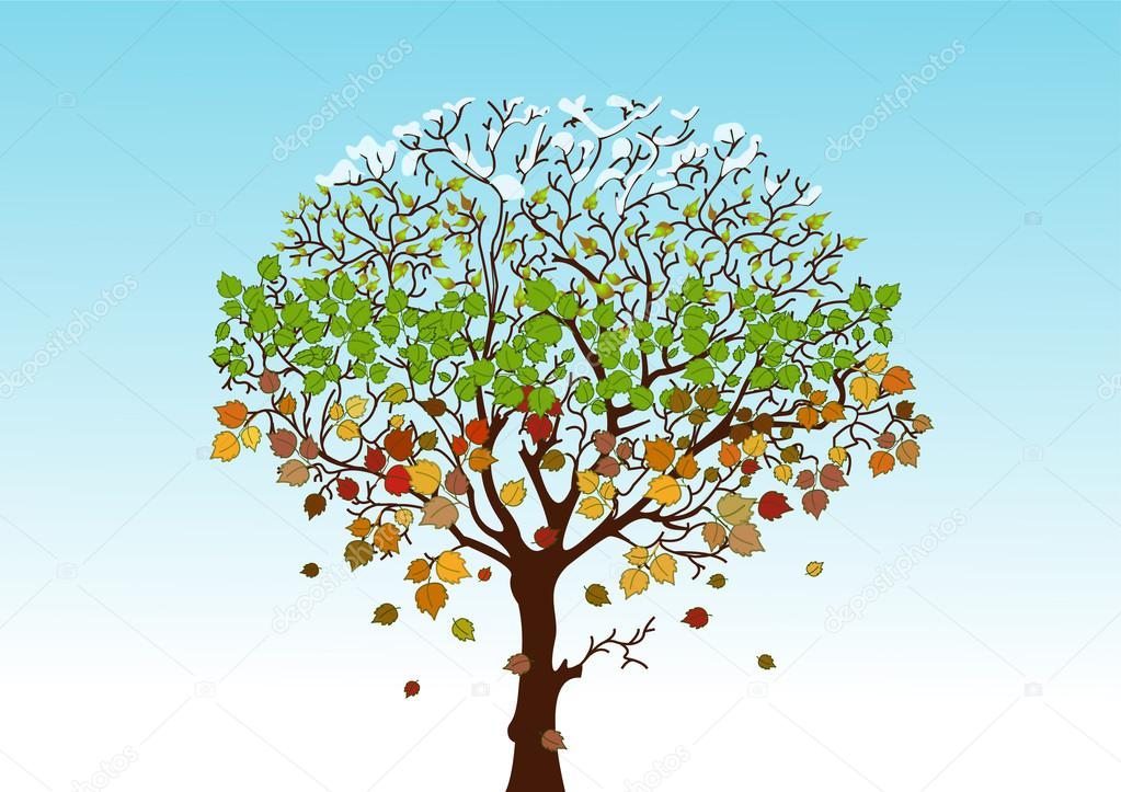 Four Seasons Logo Vector Four Seasons Tree Vector by