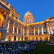 The Buda Castle in Budapest and a flower bed before — Stock Photo