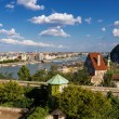 Panorama of Budapest with Elizabeth Bridge, Danube and Gellert h — Stock Photo