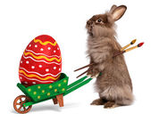 Funny Easter bunny rabbit with a green wheelbarrow and a red Eas — Stock Photo