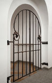 Wrought iron doors with decorative elements — Stockfoto