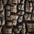 Burnt Wood Macro — Stock Photo