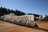 Cotton bales — Stock Photo