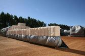 Cotton bales — Stock Photo