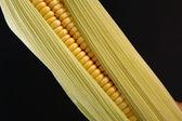 Corn on the cob — Stock Photo