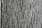 Wood floor — Foto Stock