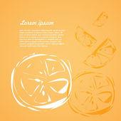 Background of fruits orange slices — Stock Vector