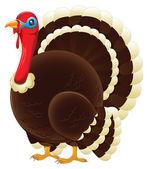 Plump Thanksgiving Turkey — Stock Vector