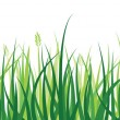 Stock Vector: Grass Border