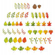 Stock Vector: Leaf Set