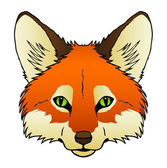 Fox Face — Stock Vector