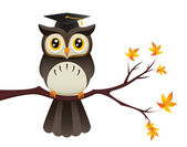 Owl Teacher — Stock Vector