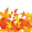 Stock Vector: Autumn Leaves Border