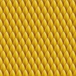 ������, ������: Yellow Reptile Skin