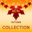 New autumn collection. Background with maple leaves. — Stock Vector #31632359