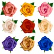 Set of roses of various colors — Stock Vector #40198453