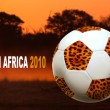 South Africa world cup - Stock Photo