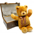 Old case with teddy bear — Stock Photo