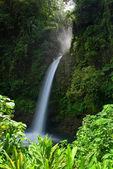 La paz waterfall — Stock Photo