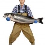 Fisherman's catch — Stock Photo