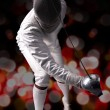 Fencing — Stock Photo