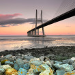 Vasco da Gama Bridge — Stock Photo