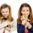 Girls with kittens — Stock Photo