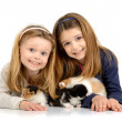 Girls with kittens - Stock Photo