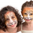 Face painting, felines — Stock Photo #28564923