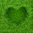 Heart on green grass. — Stock Vector