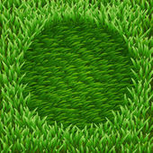 Circle on green grass — Stock Vector
